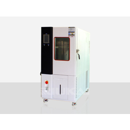 锂电池高低温湿热试验箱-瑞凯仪器
