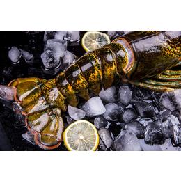 长沙澳洲龙虾批发配送 食堂酒店食材配送 蔬菜配送 冷链运输