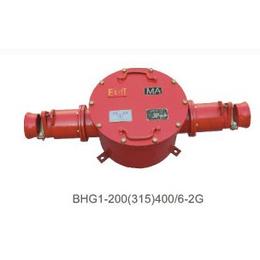 供应BHG2-200A三通高压防爆接线盒 浙江温州