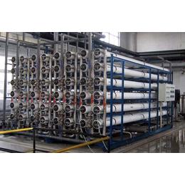 贵州EDI超纯水设备电除盐设备 - 双级反渗透+EDI设备