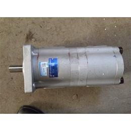 齿轮泵报价-齿轮泵-腾飞工程机械吊车维修